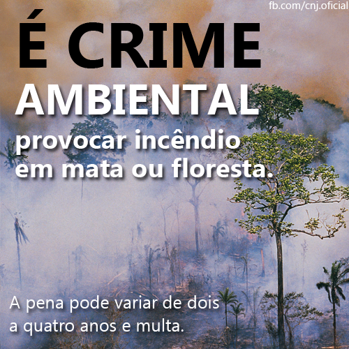 crime ambiental cnj